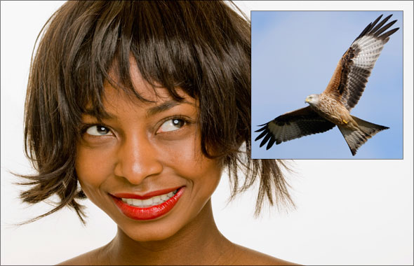 A woman with hair and a bird with feathers, ready to mask in Photoshop