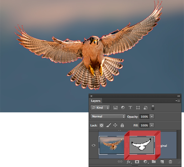 Deke's Techniques 225: Animating Bird Wings with Puppet Warp
