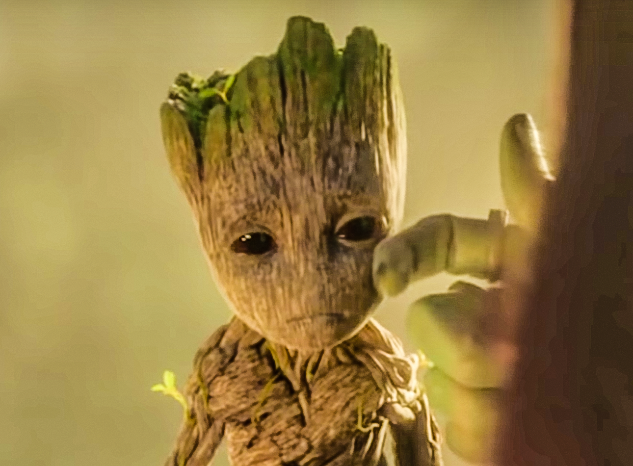 Even Groot goes capoot