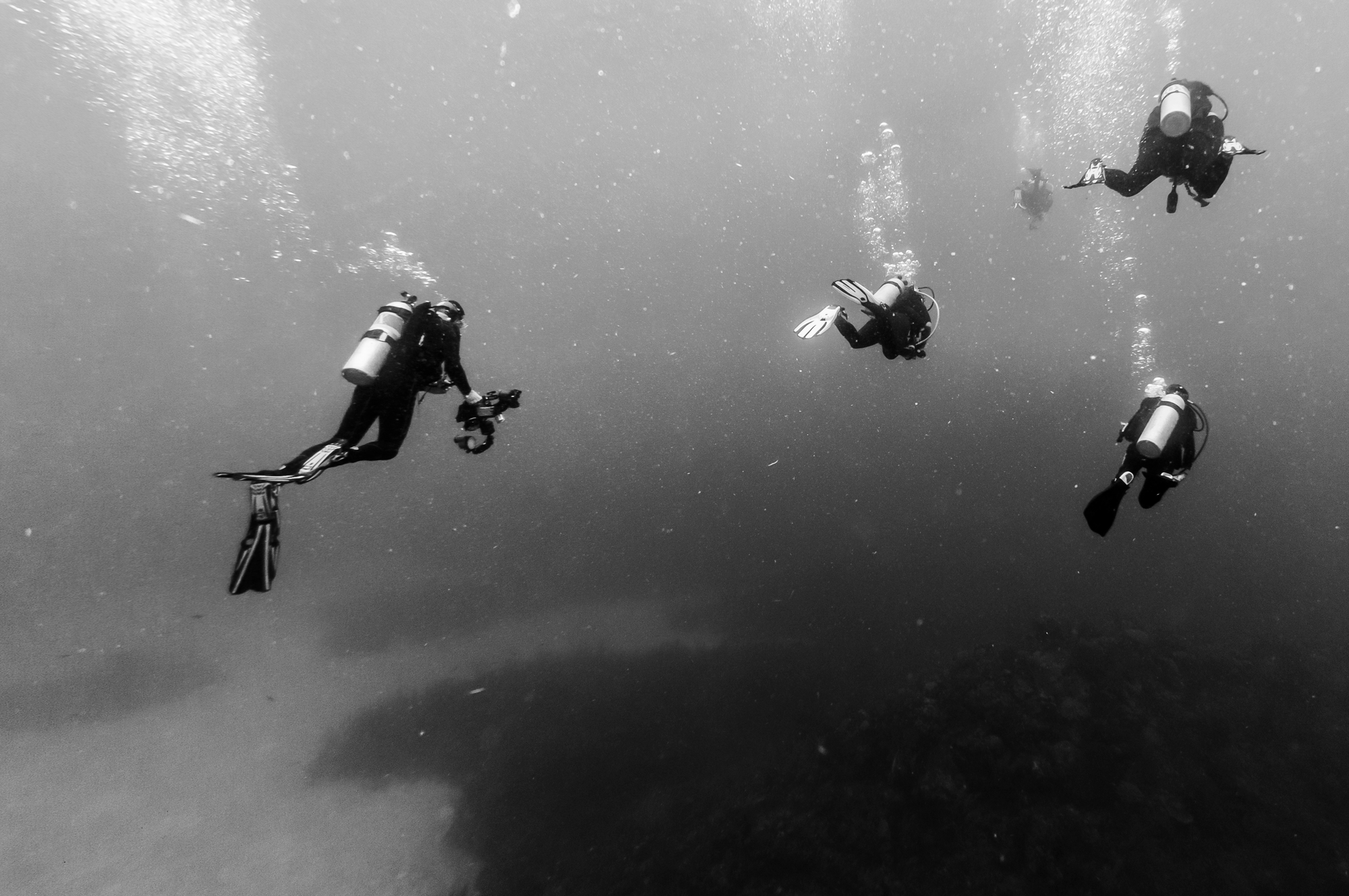 A monochrome seascape with divers