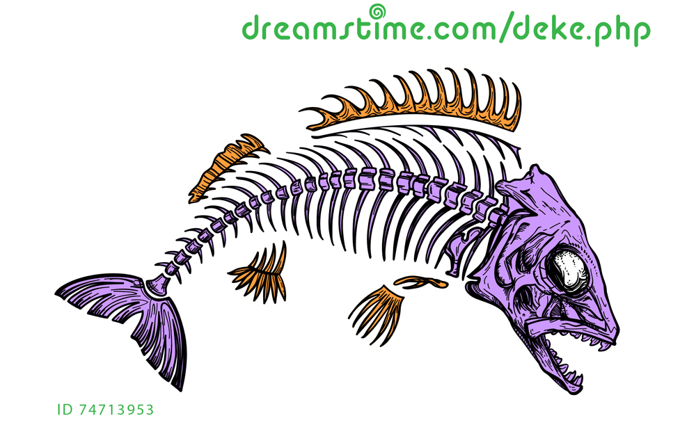 Fish skeleton from Dreamstime