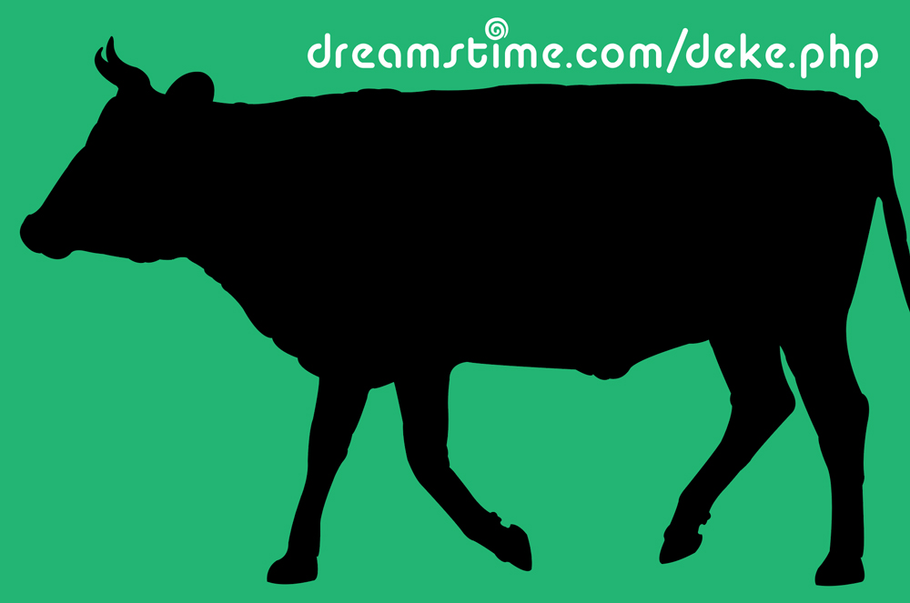 A cow silhouette from Dreamstime.com