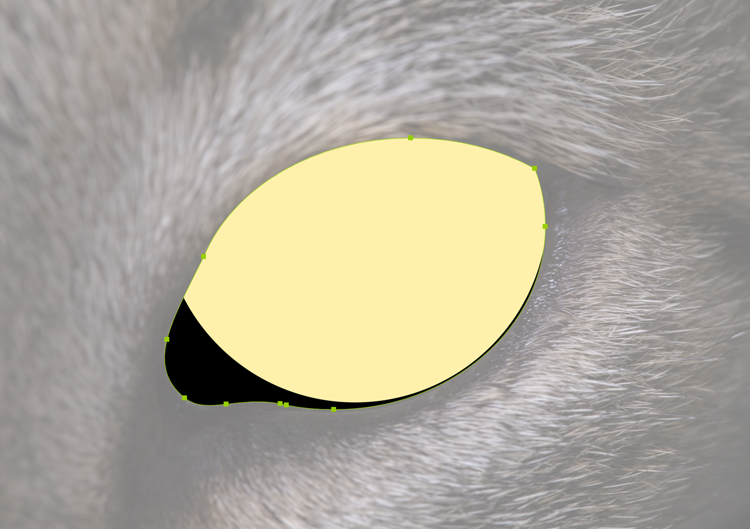 A yellow circle inside a black cat eye shape in Illustrator