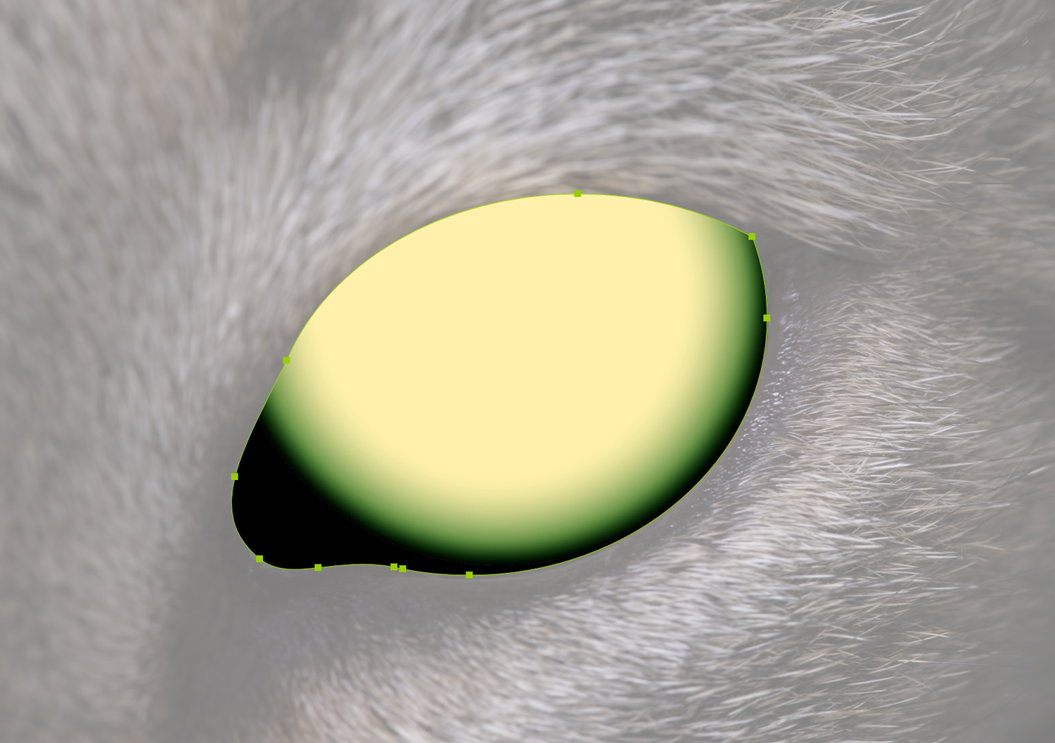 A second glow added to the cat iris in Adboe Illustrator