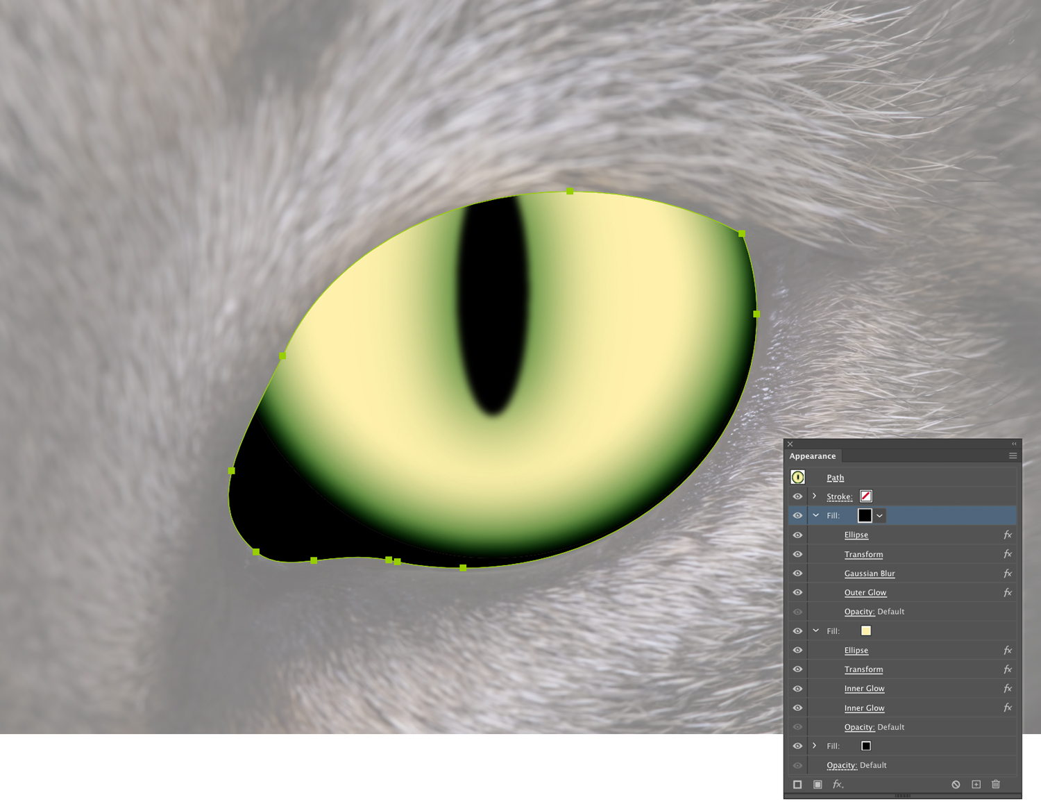 A basic cat eye created in Adobe Illustrator with the Appearance panel