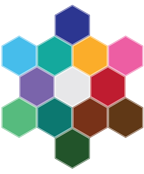 twelve hexagon calendar arrangement in Illustrator