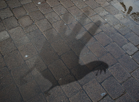 hand turkey shadow on cobblestone