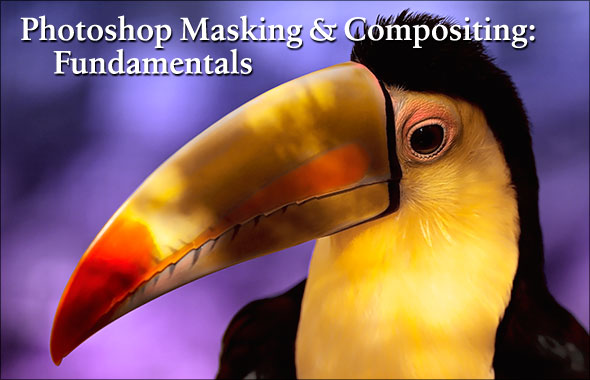 Photoshop Masking & Compositing preview