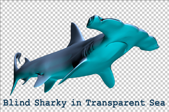 Blind shark in a transparent sea