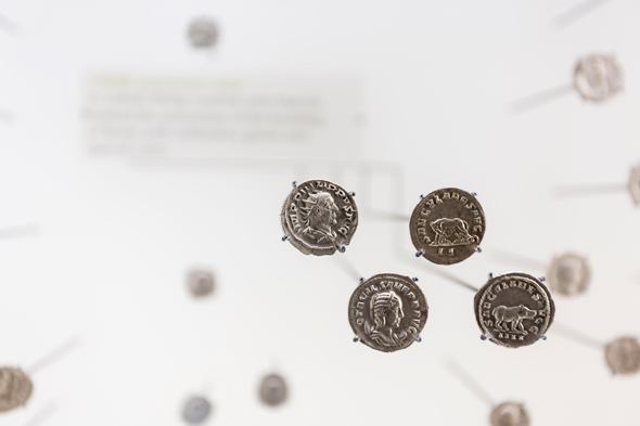 Coins in focus