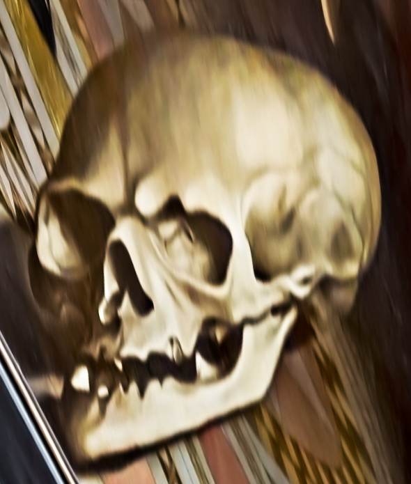 "The skull ""corrected"" in Photoshop CC"