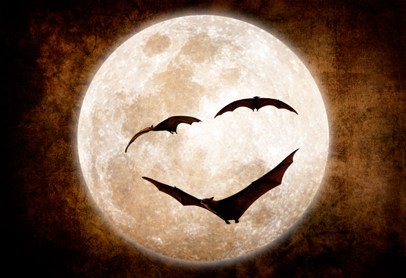 A bat-faced moon composite with real bats in Photoshop