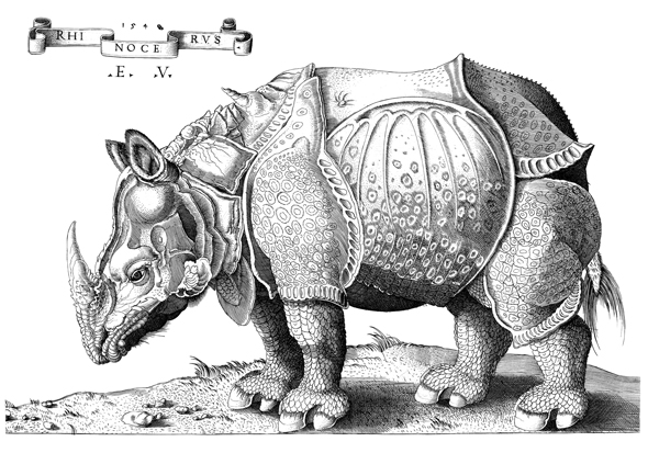 A 16th-century engraving of Dürer's Rhinoceros woodcut.