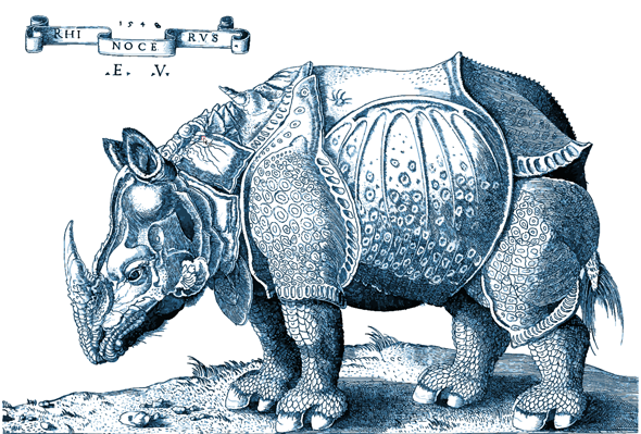 A vector-based tracing of Dürer's Rhinocerous in Adobe Illustrator